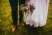 mariage bohème chateau aubry du hainaut 62